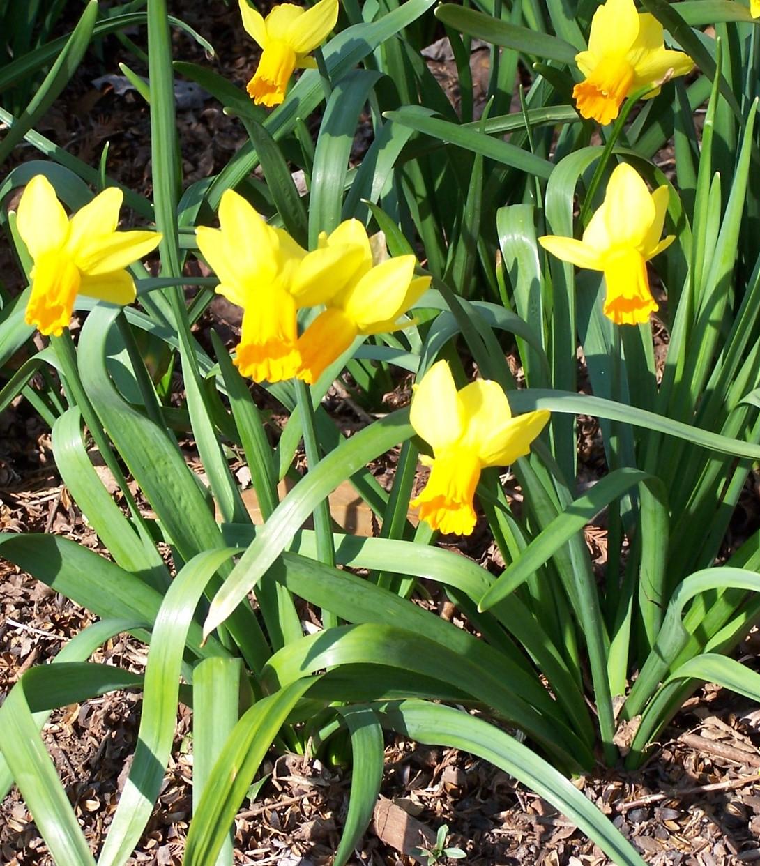 Frohe Ostern und erholsame Feiertage
